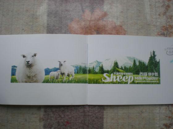 小绵羊竖笛乐谱